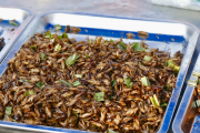 NVWA publiceert handboek Nieuwe voedingsmiddelen